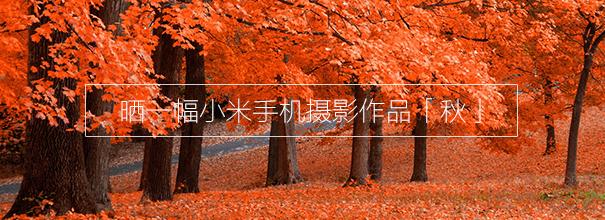 「日赛」 晒一幅小米手机摄影作品 0915 #秋#