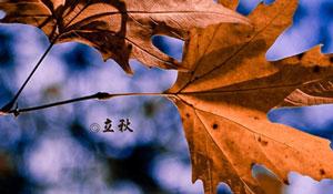 今日来撩 | 你做好贴秋膘的准备了吗?